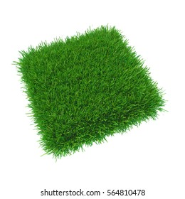 Nature fresh grass square background. 3d rendering