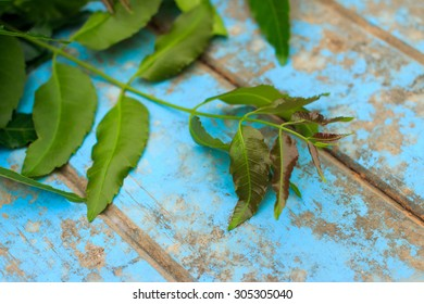 Nature fresh neem on old blue wooden