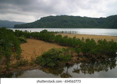 The nature of Iriomote Island