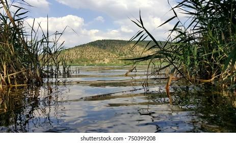 Nature lake water