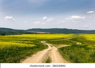 Nature landscape of agricultural fields and country road