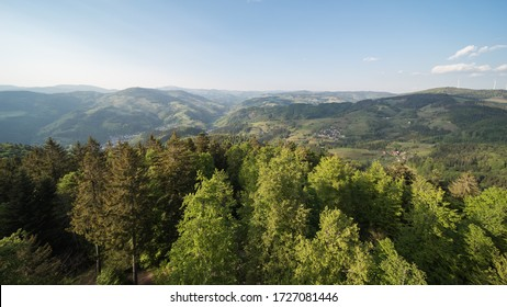 nature landscape in the black forest in southern germany.