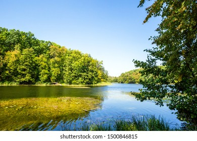 Nature landscape with lake and woods