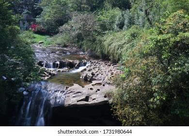 Nature landscape at Shifen Waterfall, Taiwan.