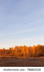 Nature landscape in vibrant autumn colors