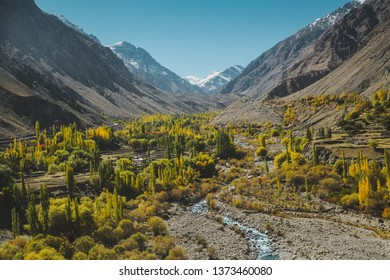 Nature landscape view of yellow and green foliage in autumn with a stream surrounded by mountains in Karakoram range, Skardu. Gilgit Baltistan, Pakistan.