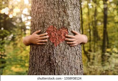 Naturliebhaber, Nahaufnahme von Kinderhänden, die Bäume mit Kopienraum umarmen