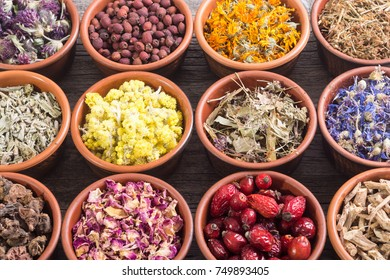 Nature medicine . Mix of herbs in bowl