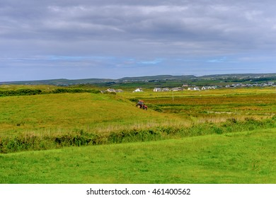 Nature near the Cliffs of Moher (Aillte an Mhothair), edge of the Burren region in County Clare, Ireland. Great touristic attraction