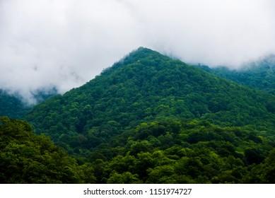 nature of the occupied Georgian territory (Abkhazia)