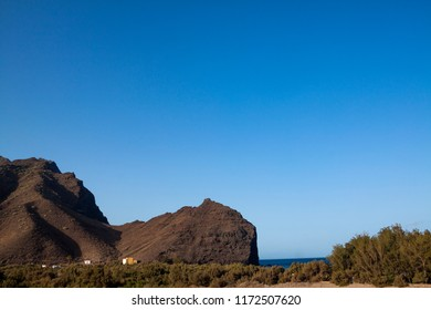 Nature on the beach of La Aldea, Gran Canaria