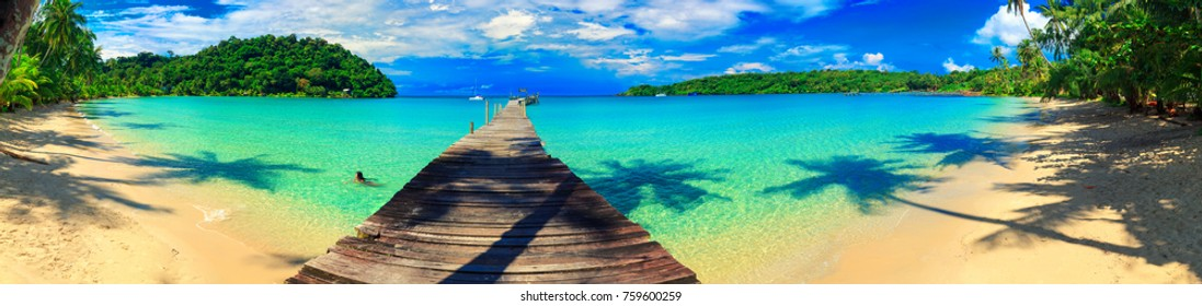 Nature panoramic landscape: Amazing Panorama sandy tropical beach with silhouette coconut palm tree in crystal clear sea and scenery wooden bridge out of the horizon /  Palm and tropical beach