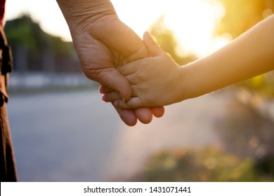 Nature a parent holds the hand of a small child