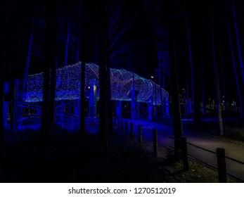 Nature park in city Jurmala, night shoot.
