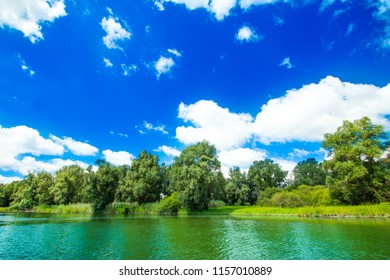 Nature park Kopacki rit in Slavonia, Croatia, river, trees and sky, popular tourist destination and birds reservation