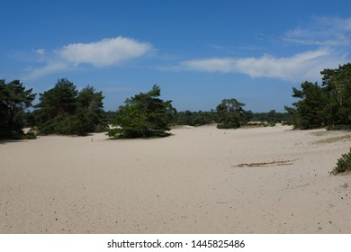 In a nature park with sandy dunes near Dutch town called Amersfoort