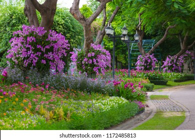 Nature park, Sidewalk in the Blooming relaxation garden, Outdoor flowers gardening in nature park, copy space, selective focus