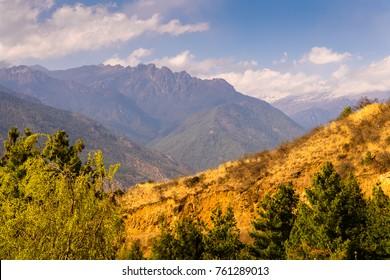 Nature of Paro Valley, Bhutan
