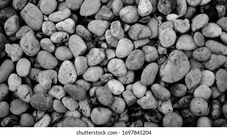 nature pebble stone background. grit stone outdoor garden