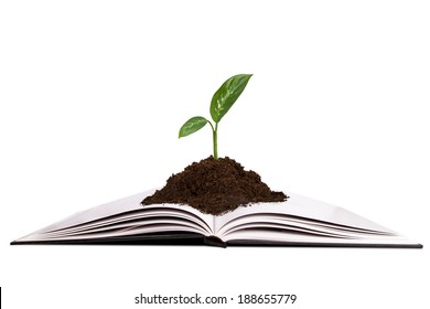 Nature plant in soil growing in book, isolated on white background.