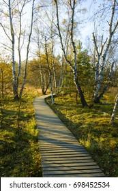 Nature preserve Soos near the small west Bohemian spa town Frantiskovy Lazne (Franzensbad) in autumn - Czech Republic