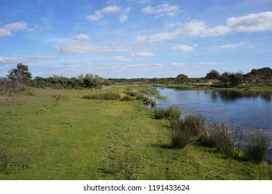 Nature and recreation area in the Netherlands called the Amsterdamse Waterleidingduinen near the cities of Zandvoort and Noordwijk.