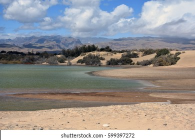 The nature reserve Charca de Maspalomas located on the south coast of the Canary island Gran Canaria, Spain.