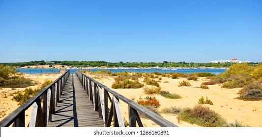 Nature Reserve Marshes of Rio Piedras (River Stones) and Flecha del Rompido, province of Huelva, Andalusia, Spain