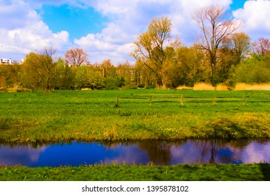 nature reserve in the vondelpark