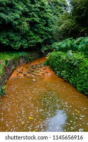 Nature rich in thermal waters, minerals and strong colors flow from everywhere, Dona Beija, island of Sao Miguel, Azores.