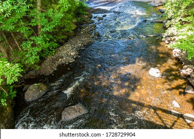 Nature Scene of water rapids showing water streaming through beautiful rocks and lush green forest