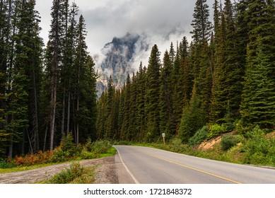 nature sceneries in the area surrounding Lake Moraine, Alberta, Canada