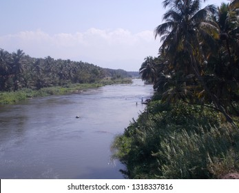 Nature scenery background with river, tree and sky