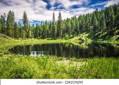 nature scenics around spokane river washington