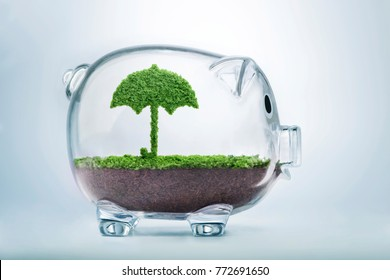 Nature is shelter concept. Grass growing in the shape of an umbrella, inside a transparent piggy bank, symbolising the need to invest in the protection of the environment.