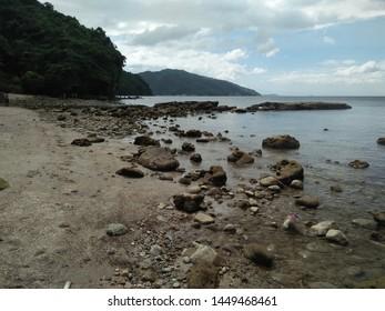 Nature shore rocks lowtide beach - Shutterstock ID 1449468461