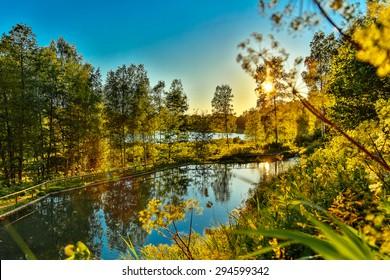 Nature in South Estonia Summer