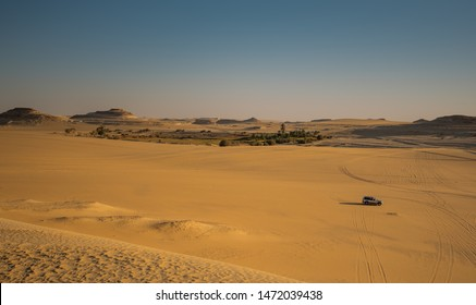 nature sping in middle siwa desert