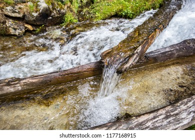 Nature srping water flow from mountain through an old mossy wood tube