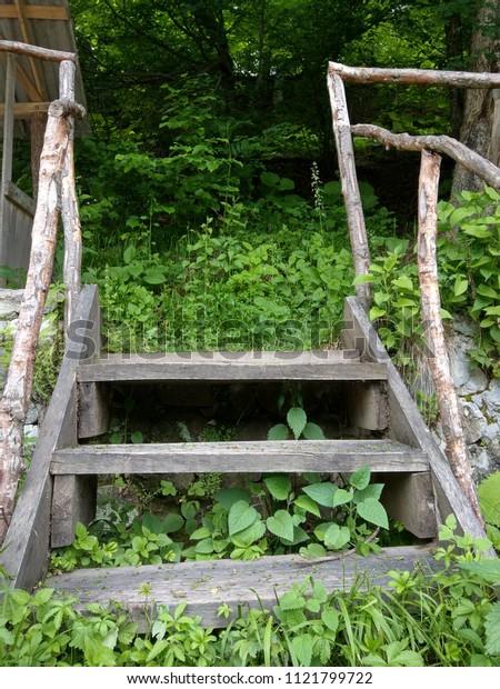 Nature Stairs Wood