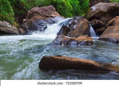 Nature stream waterfall in forest.