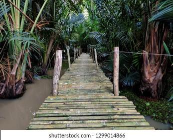 Nature study path