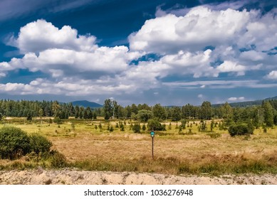 Nature In Sumava National Park, Czech Republic, Europe