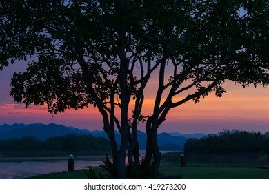 The nature of sunset with colorful twilight at mountain park before night.This image taking by shallow focus deep of field.