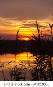 nature sunset on lake