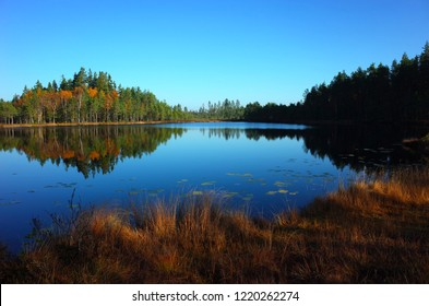 Nature of Sweden in autumn, Calm lake Dodtjarnen with forest reflection, Peaceful outdoor image