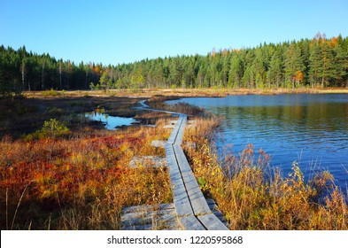 Nature of Sweden in autumn, Wooden path on calm lake Stora Abbortjarnen, Peaceful outdoor image, Lake Stora Abbortjarnen is popular fishing destination in Sweden
