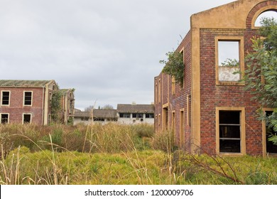 Nature taking over some abandoned buildings in South Africa.  Post apocalyptic/nuclear fallout concept image.