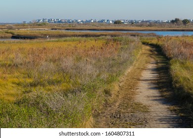 Nature Trail in Galveston Island State Park with Wetlands FG and Galveston City BG