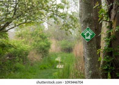 Nature Trail with green trail marker on a tree.